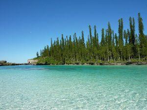 foto dari sini http://en.wikipedia.org/wiki/New_Caledonia