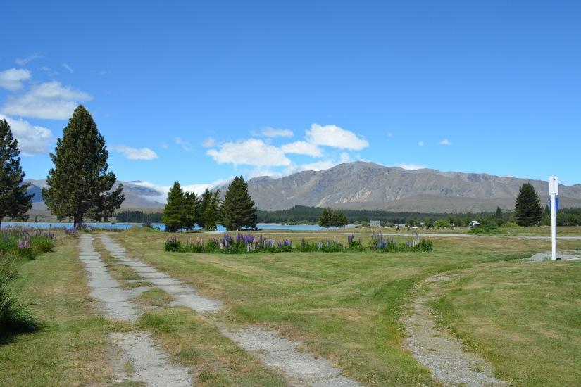 Jalan menuju Lake Tekapo