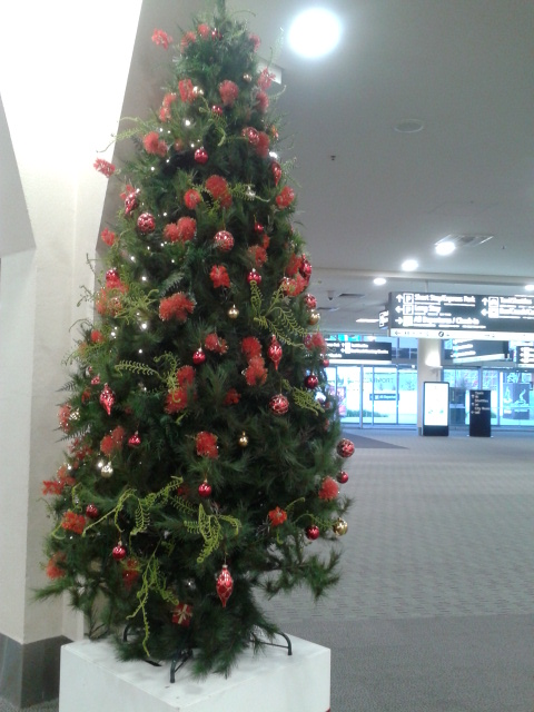 Pohon natal di Christchurch Airport