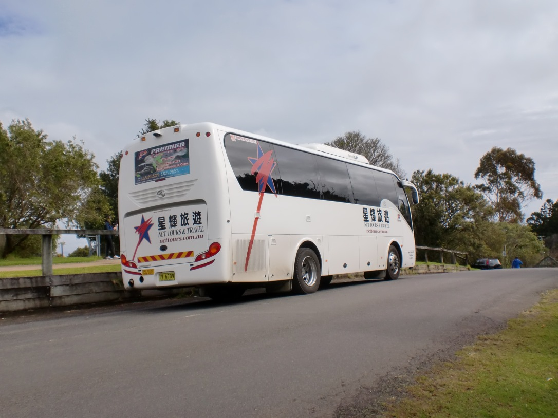 Bus yang saya tumpangi bersama rombongan korea di O'Reilly's