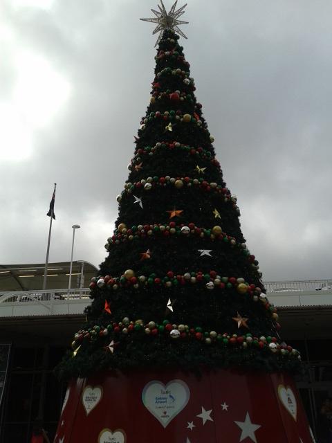 Pohon natal gede banget