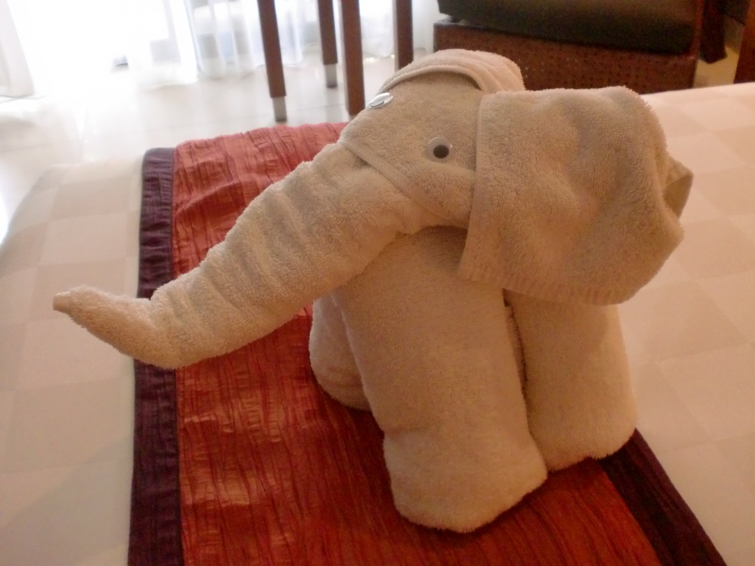 Little cute elephant